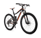 Quad XC 100 29ER